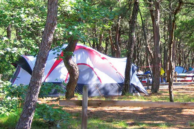 Massachusetts Campgrounds Adventure Bound Cape Cod Ma